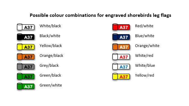 Possible colour combinations